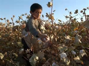 uzbekistan-child-labor-cotton
